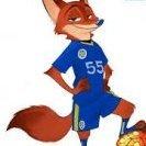 Foxc1