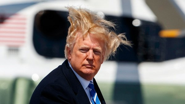 trump-hair.thumb.jpg.038f04be3fc50ec2f79628aeb804a9a8.jpg