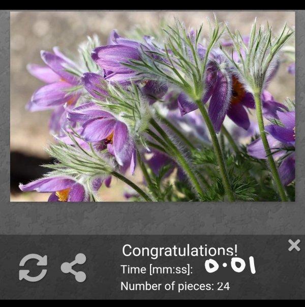 Screenshot_20200416_180613_com.whatsapp_1.jpg